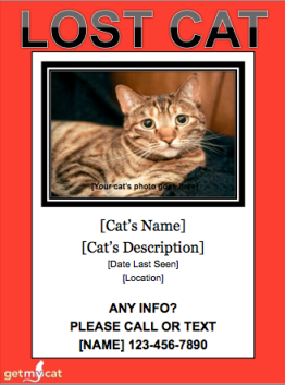 From http://www.getmycat.com/lost-cat-flyer-template/