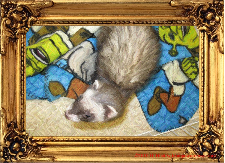 WA Ferret Rescue | Truth, Justice, and All-American ...