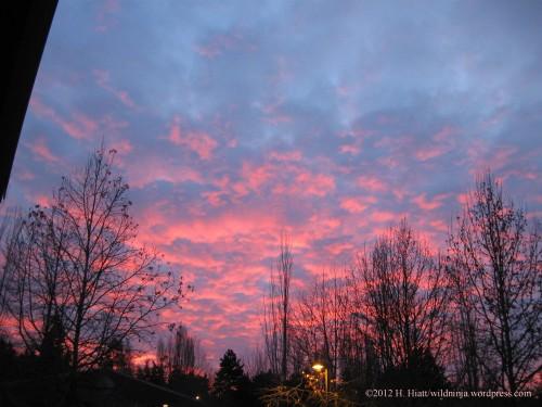 Sunrise 12-31-12 1
