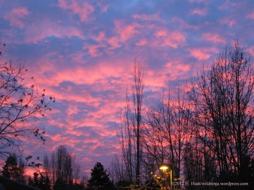 Sunrise 12-31-12 2