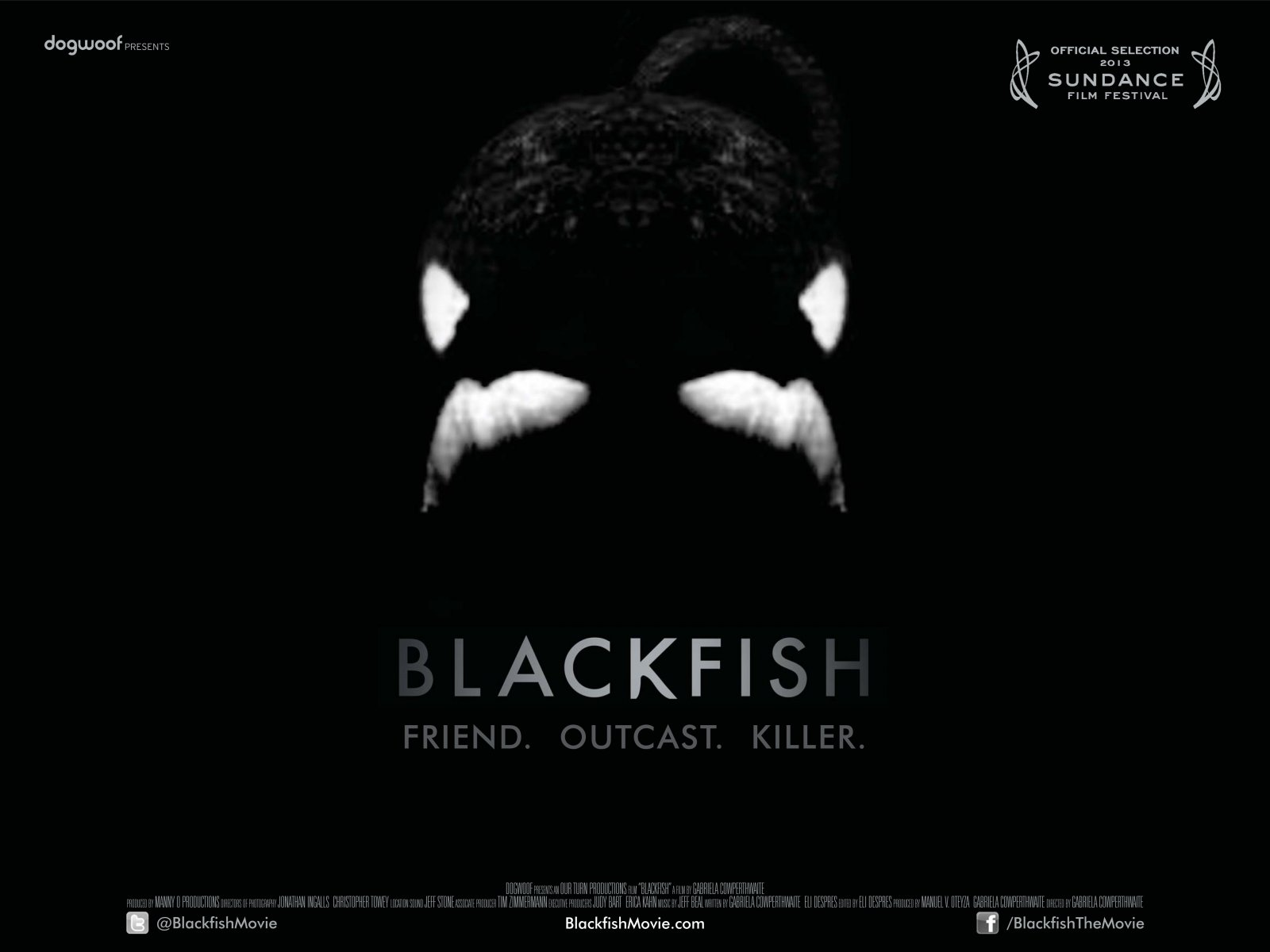 Click picture to go to the Blackfish movie site