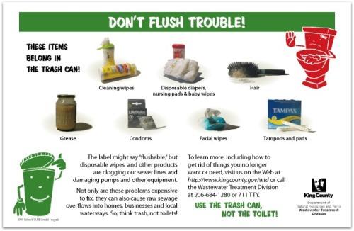 King County No Flush