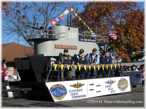 Auburn Veterans Day Parade 2014 11