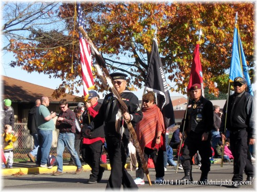 Auburn Veterans Day Parade 2014 13