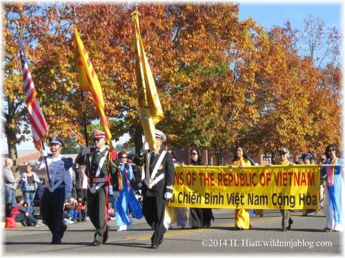 Auburn Veterans Day Parade 2014 14