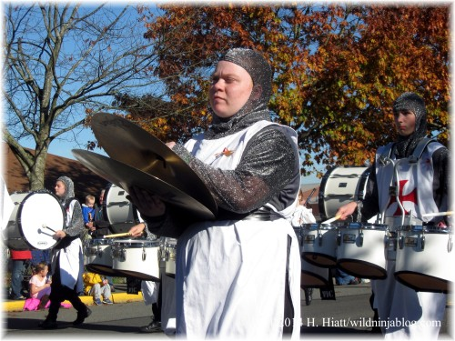 Auburn Veterans Day Parade 2014 19