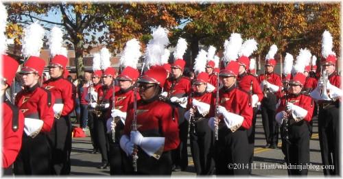 Auburn Veterans Day Parade 2014 21