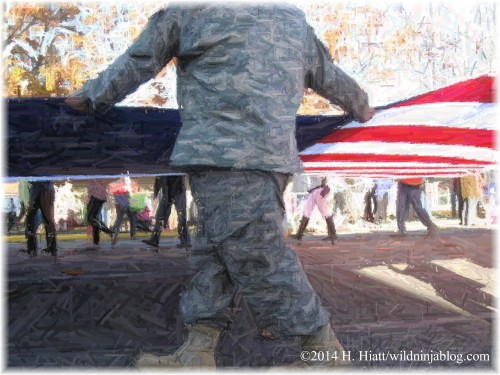 Auburn Veterans Day Parade 2014 22
