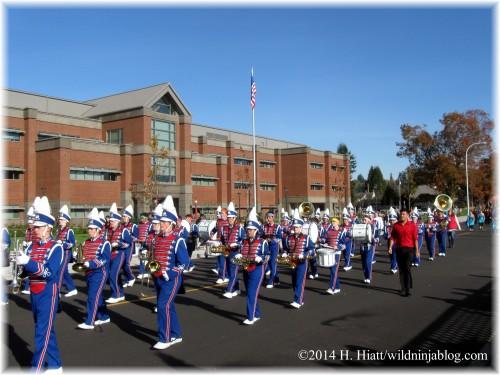 Auburn Veterans Day Parade 2014 35