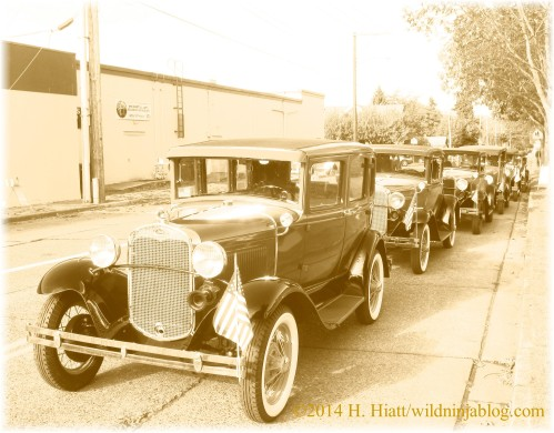 Auburn Veterans Day Parade 2014 38