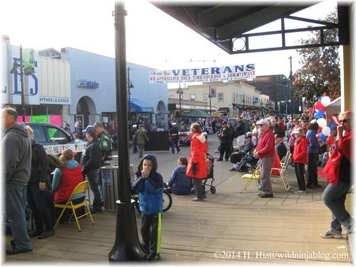 Auburn Veterans Day Parade 2014 39