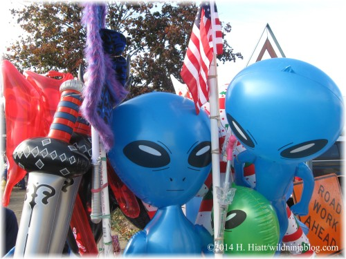 Auburn Veterans Day Parade 2014 40