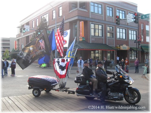 Auburn Veterans Day Parade 2014 42