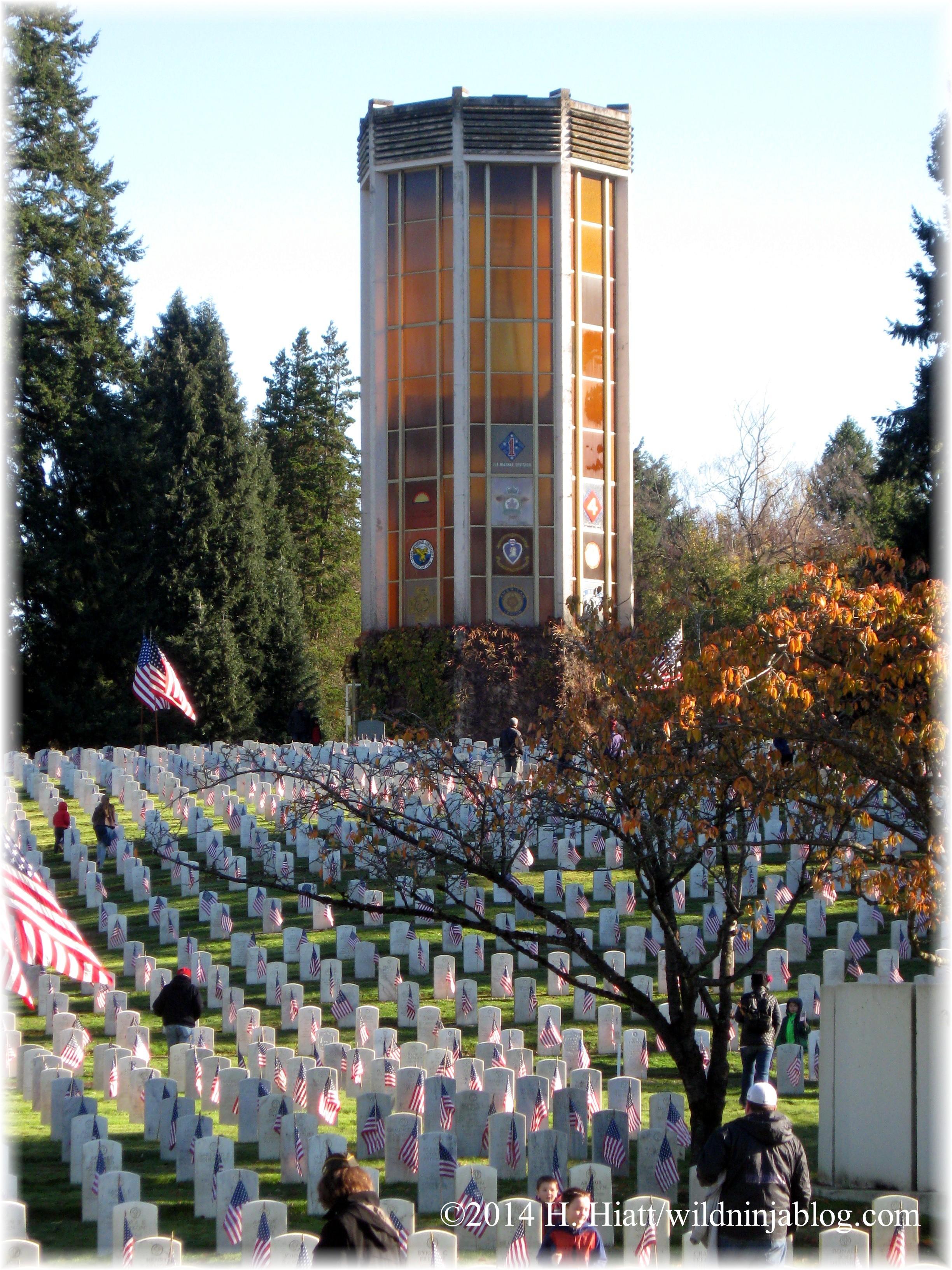 Veterans Day 2014 4