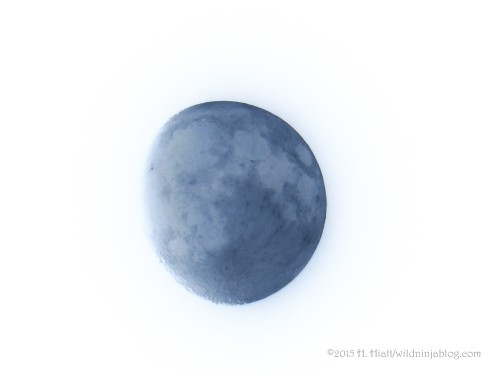 Moon 8-26-15 2