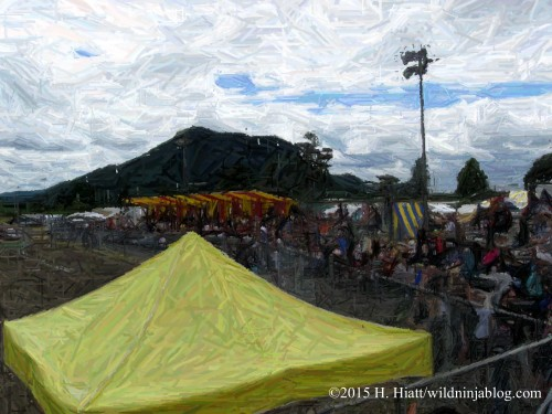 Seattle Highland Games 2015 1