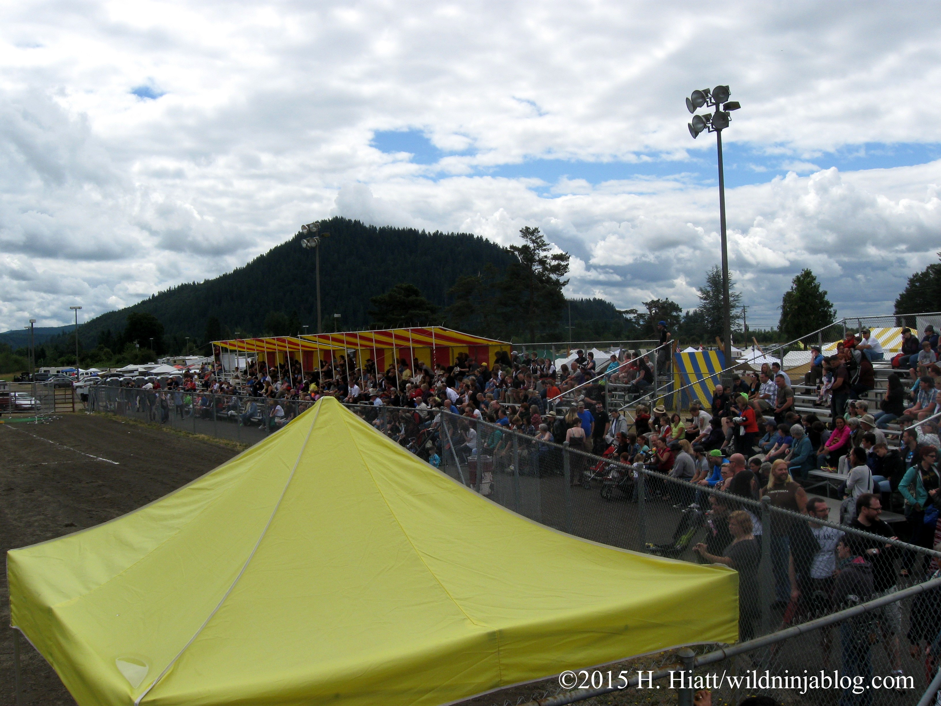 Seattle Highland Games 2015 14