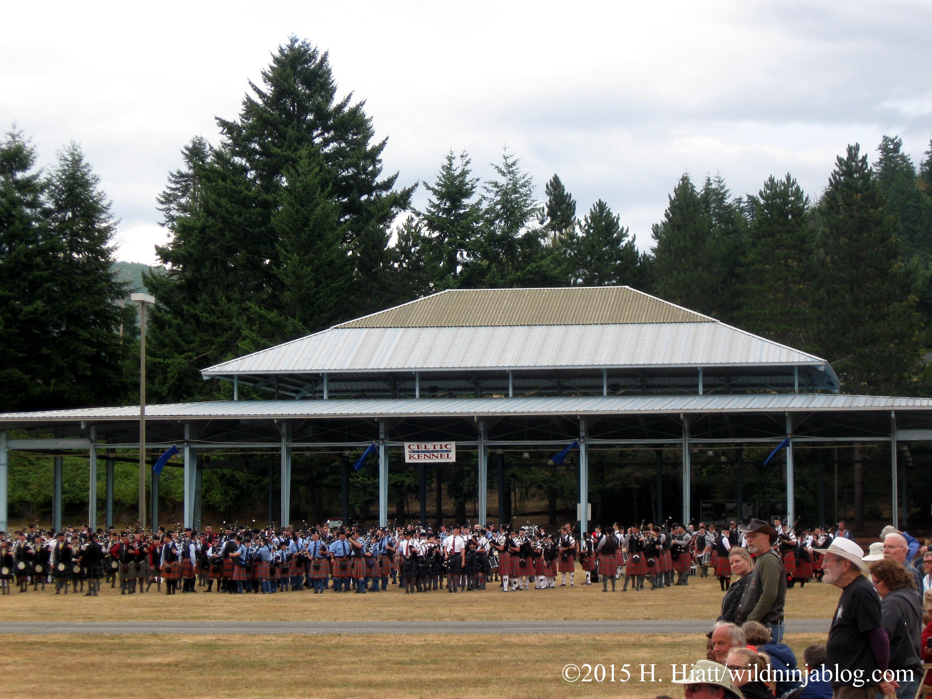 Seattle Highland Games 2015 28