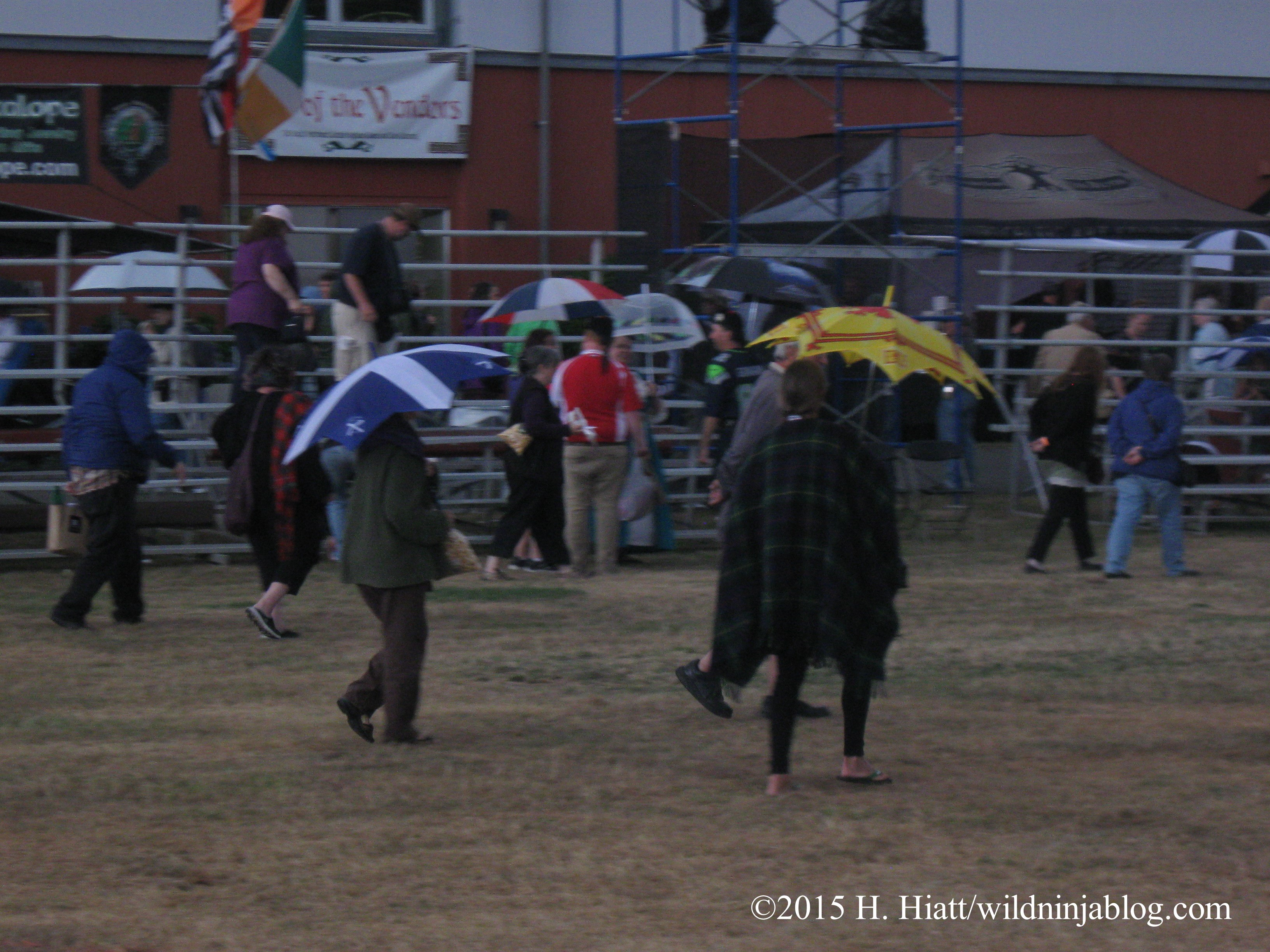 Seattle Highland Games 2015 35
