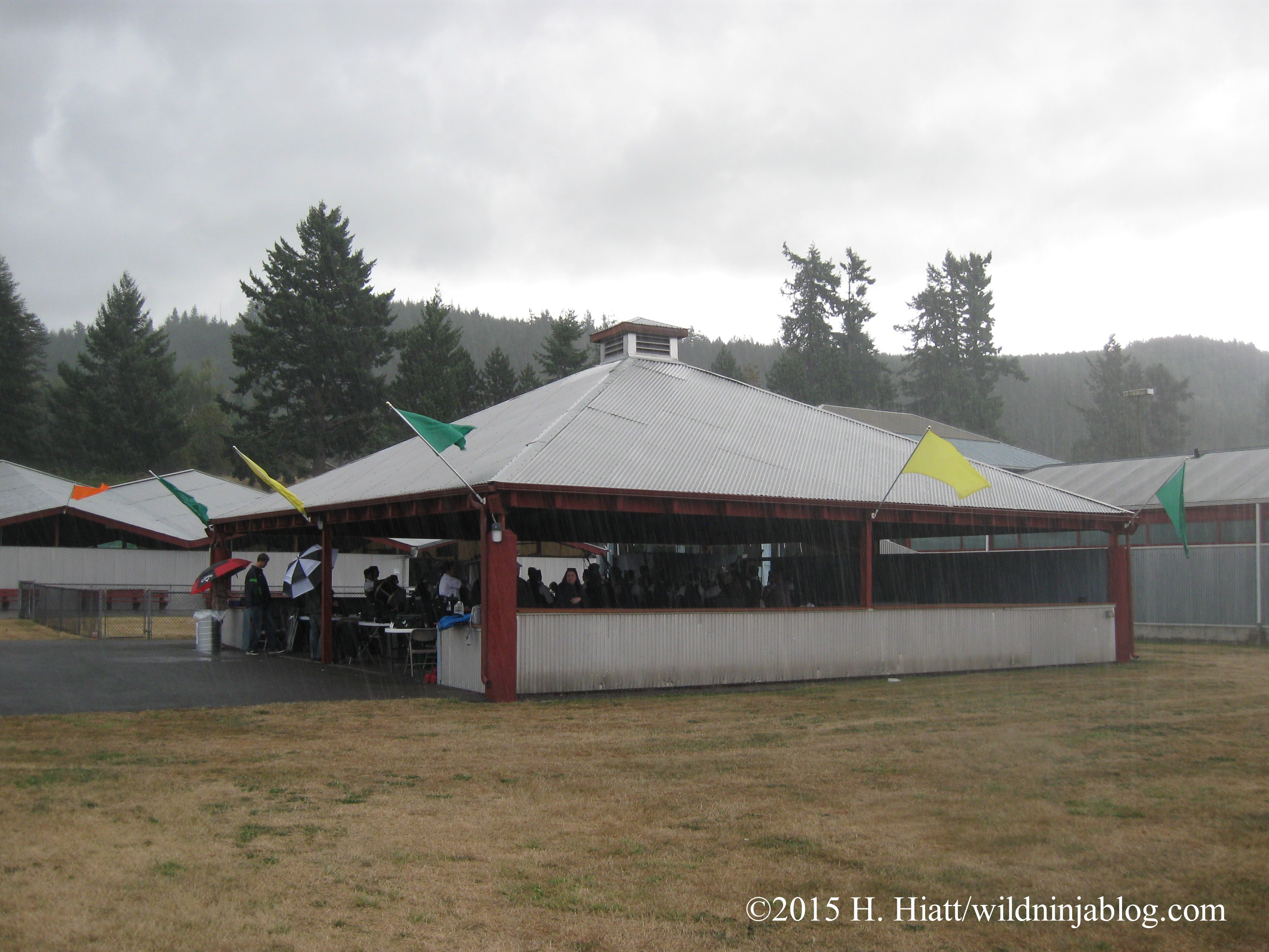 Seattle Highland Games 2015 36