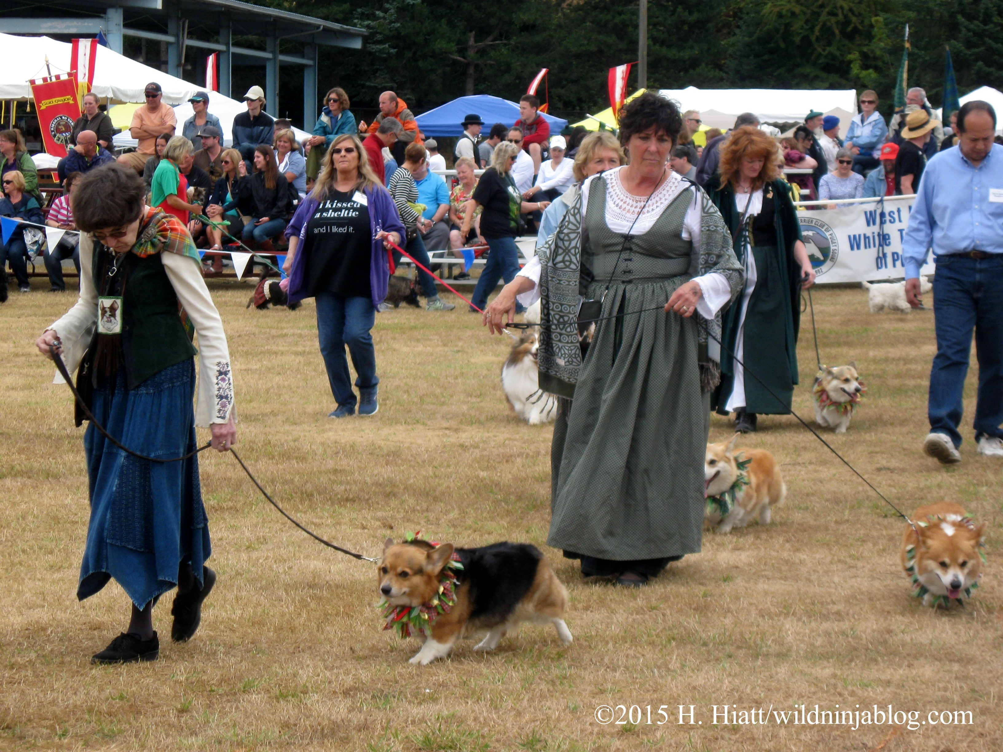 Seattle Highland Games 2015 6