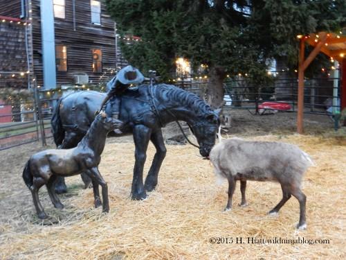 Reindeer 12-15 1