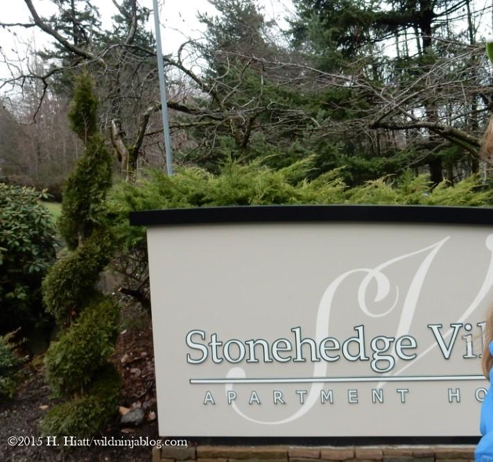 Stonehedge 12-22-15
