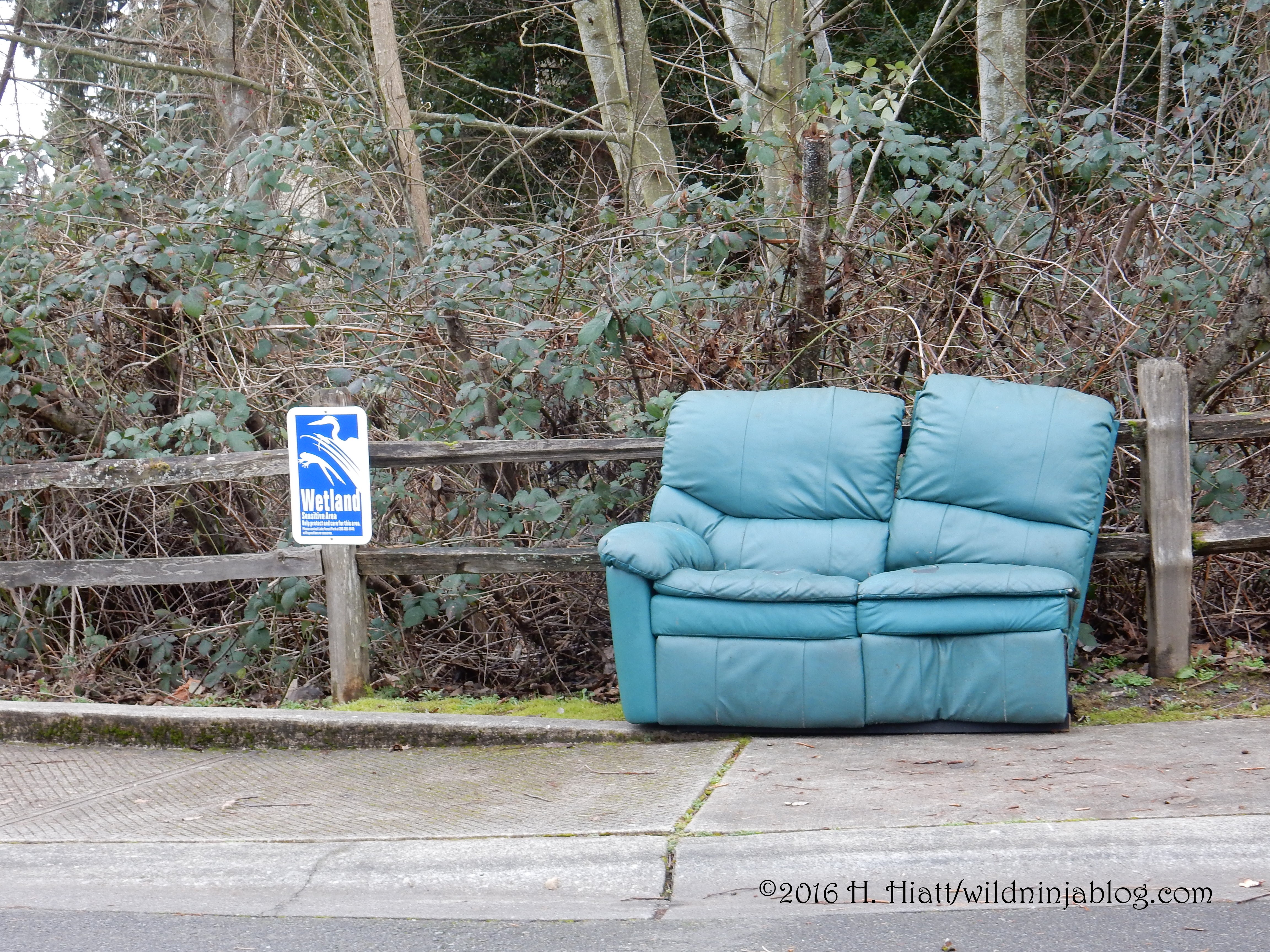 Wetlands Couch