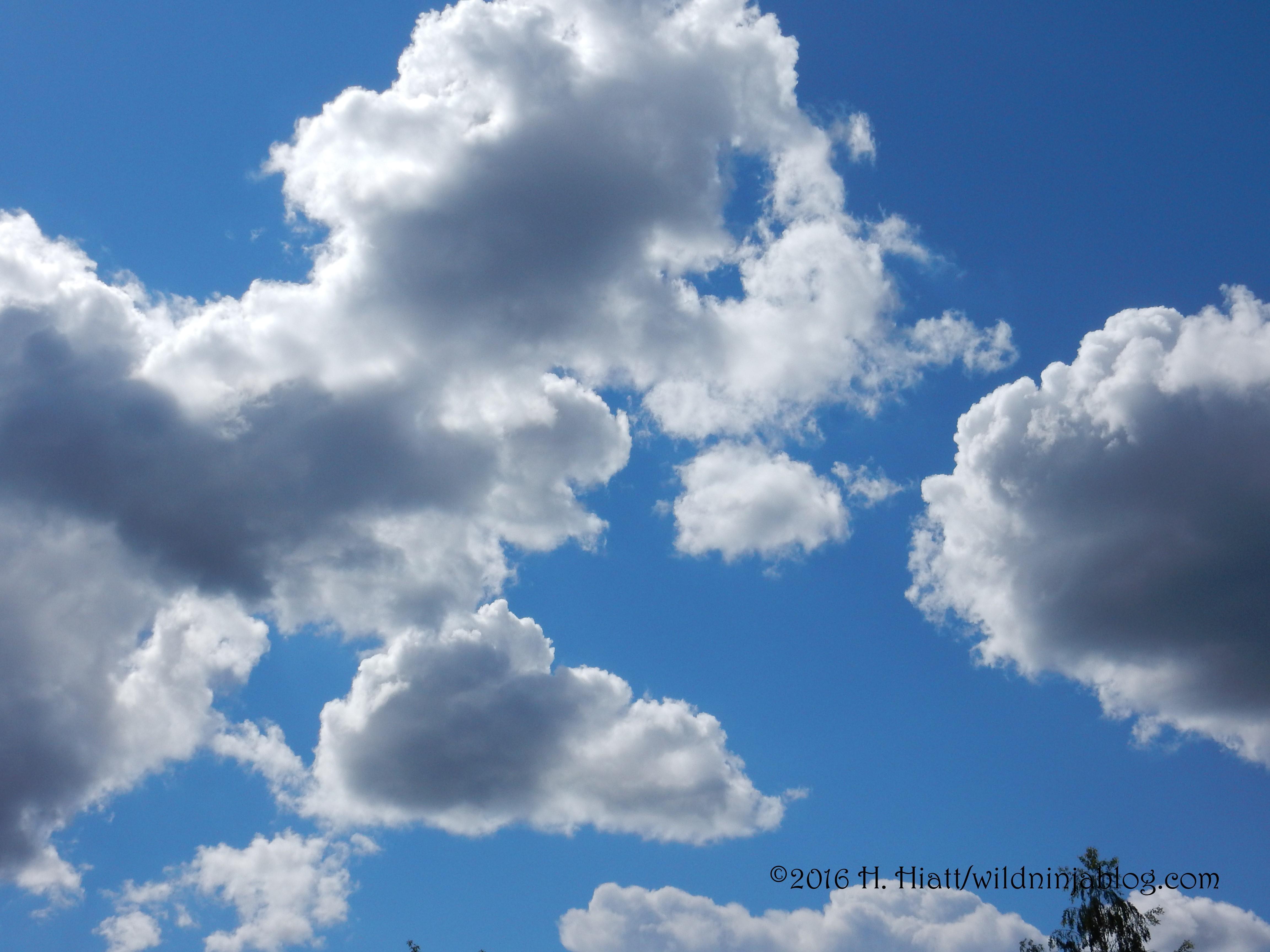 Clouds 6-16-16 1