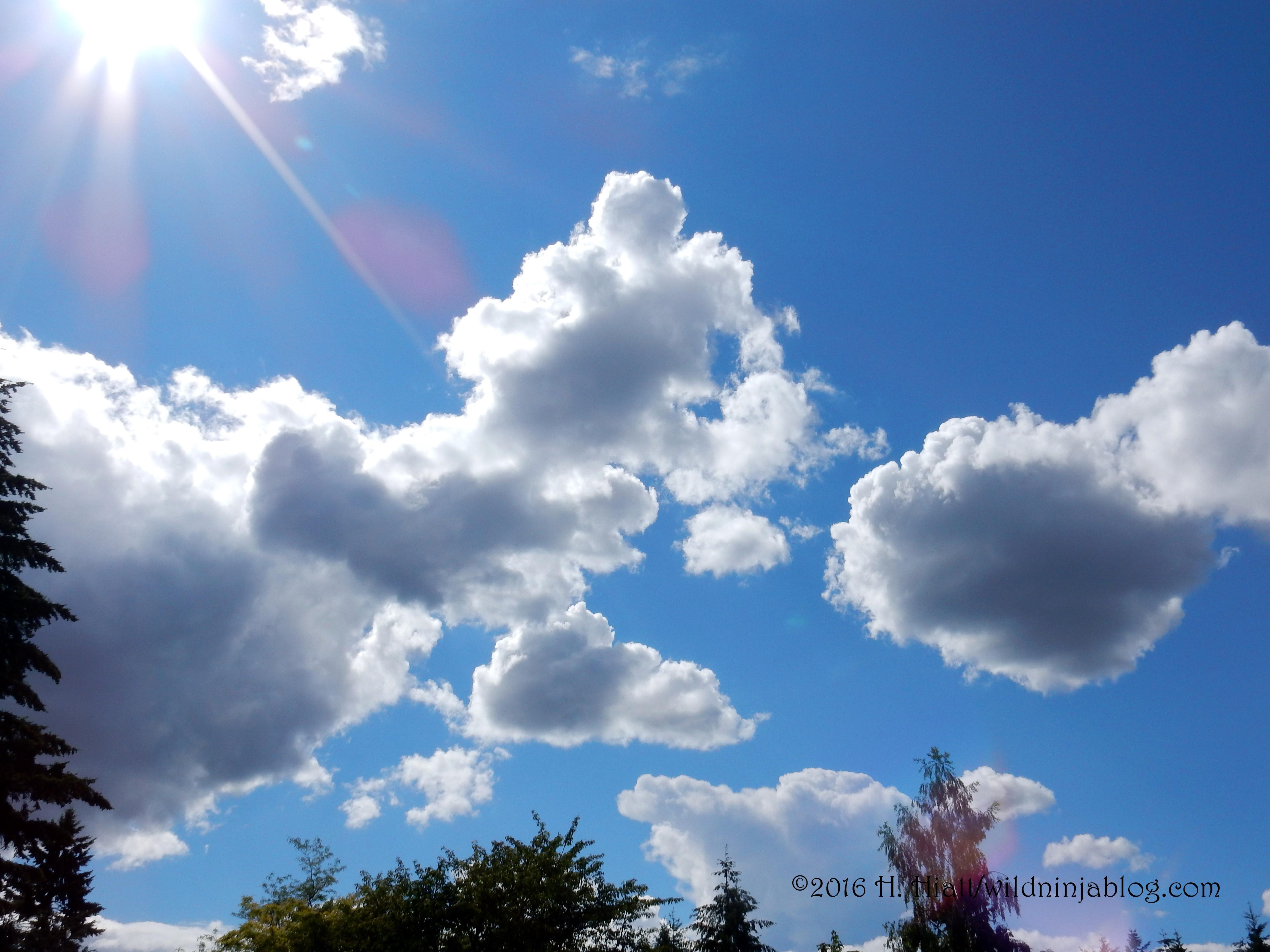 Clouds 6-16-16 2