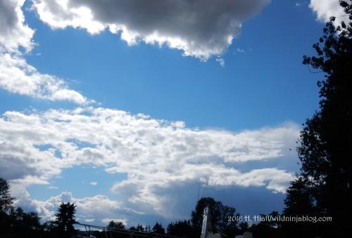 Clouds 6-16-16 3