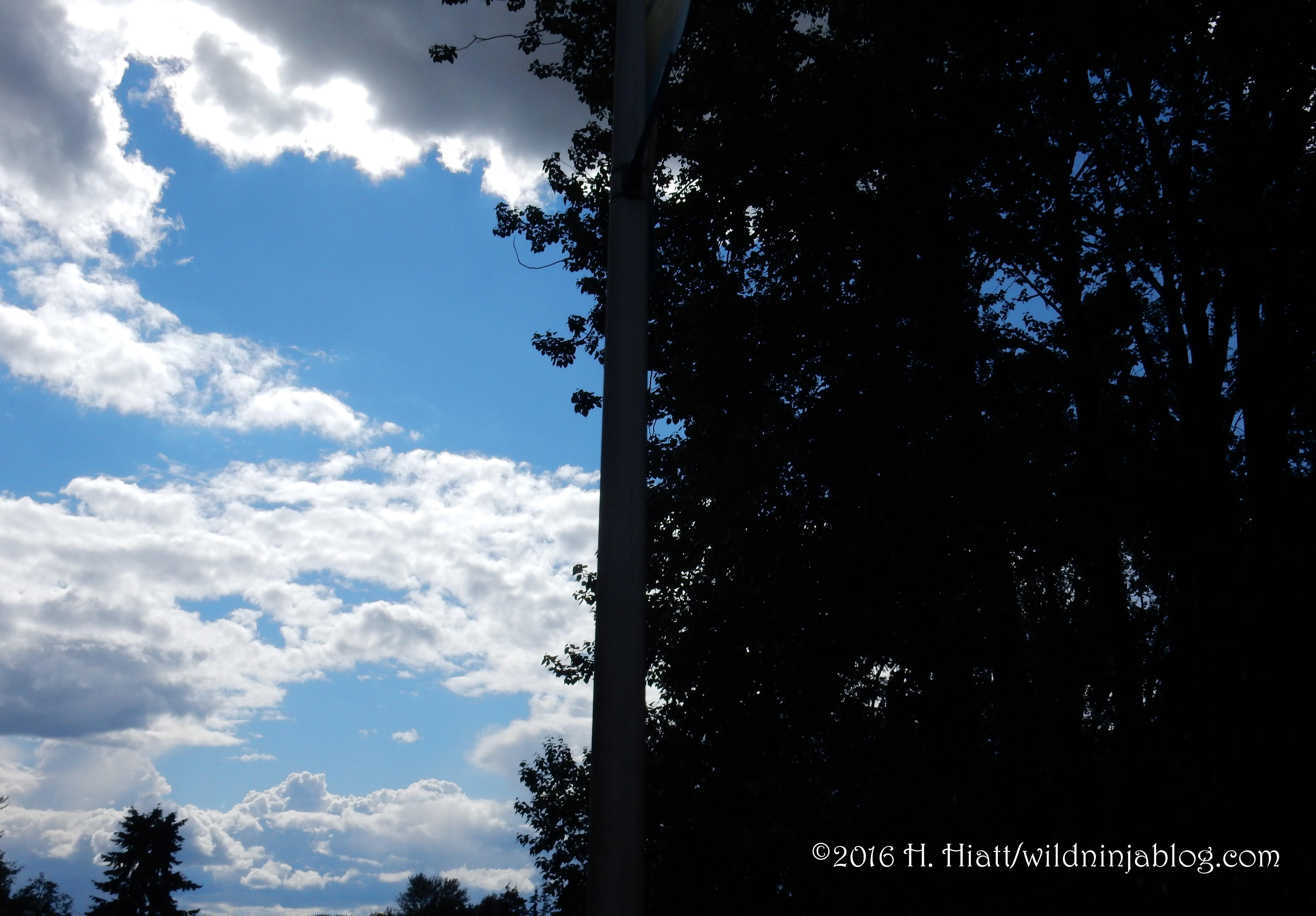 Clouds 6-16-16 4