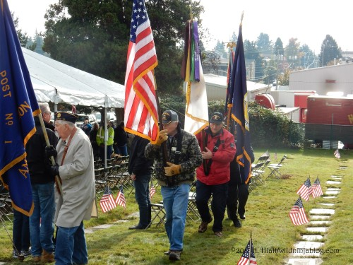 Veterans Day 11-10-17 11