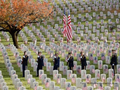 Veterans Day 11-10-17 9