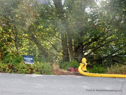 Kirkland Fire 9-12-18 11